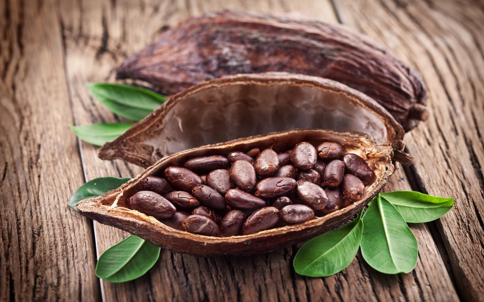 Кот-д'Ивуар и Индонезия готовят мир к сокращению производства какао-бобов