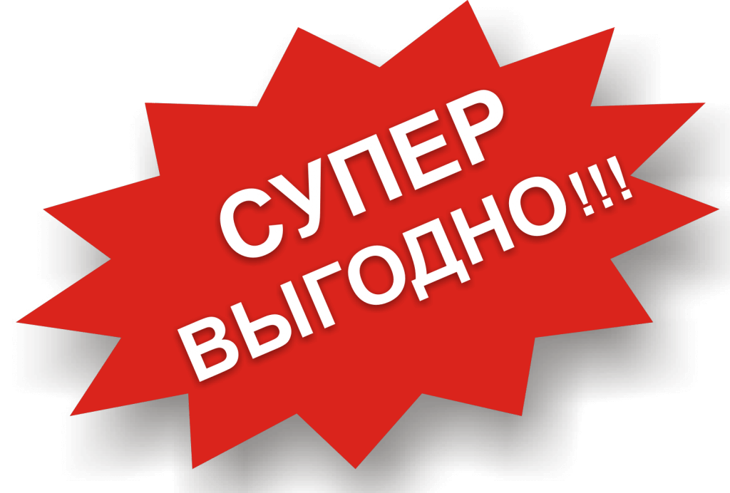 mishka10.jpg