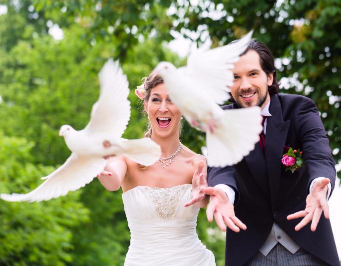 Мы найдём для вас достойного жениха или невесту!