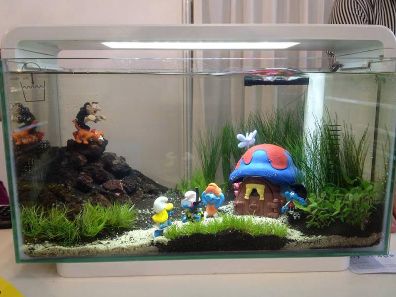 Как сделать маленькие аквариум 124