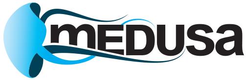 Программа Медуза Скачать - фото 4