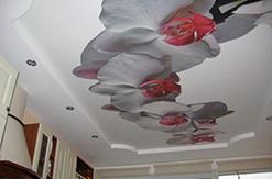 натяжные потолки киев