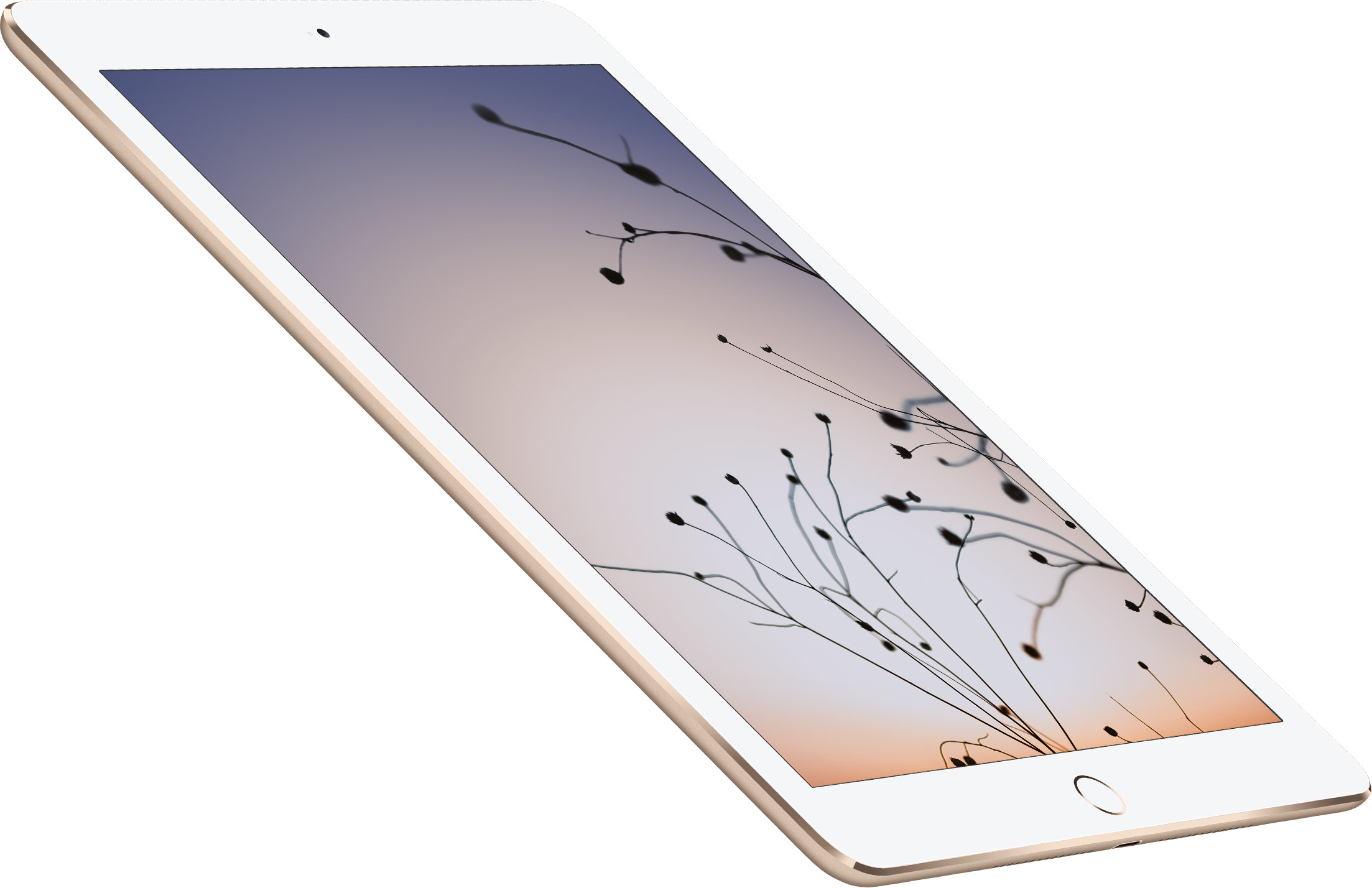 Apple iPad Air 2, Эппл Айпад Аир 2