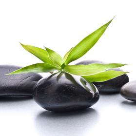 Как начать свой бизнес, развить и масштабировать компанию