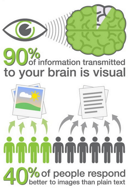 Infographic visuals