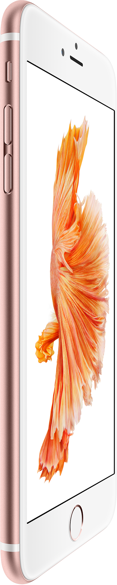 Apple iPhone 6s | iPhone 6s Plus