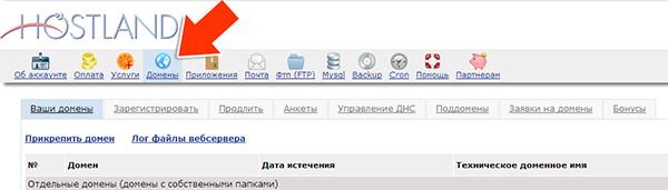 Иллюстрация к статье: Привязка домена и поддомена в панели hostland.ru