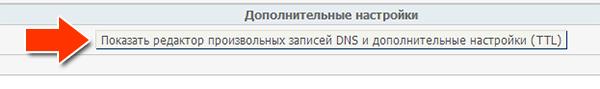 Показать редактор произвольных записей DNS и дополнительные настройки (TTL)