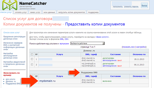 Иллюстрация к статье: Привязка домена и поддомена в панели namecatcher.ru