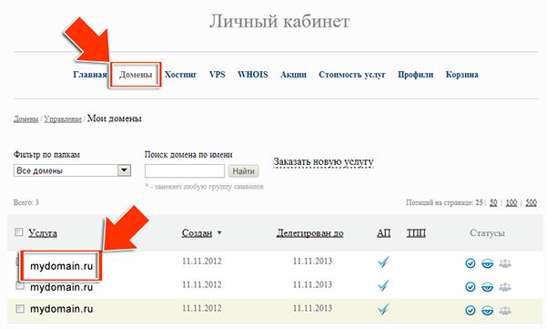 Иллюстрация к статье: Привязка домена и поддомена в панели regod.ru