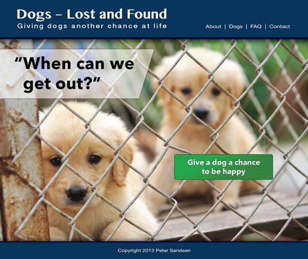 пример домашней страницы приюта для собак