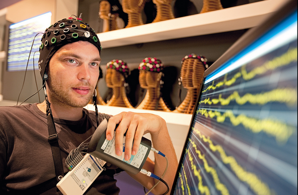 Почему маркетологи должны думать продолговатым мозгом?