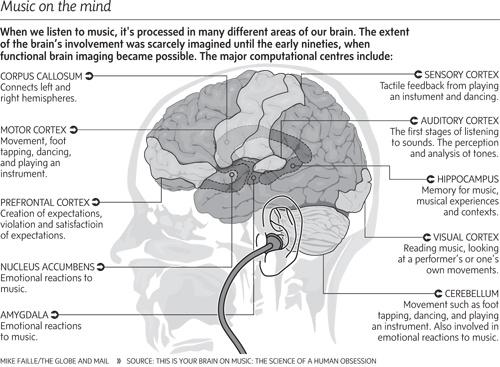 Иллюстрация к статье: 8 фактов о влиянии музыки на работу головного мозга