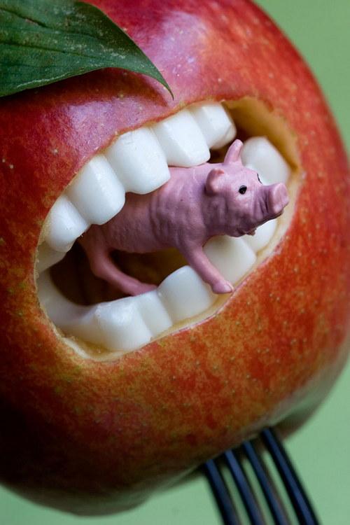 Яблоко пожирает свинью