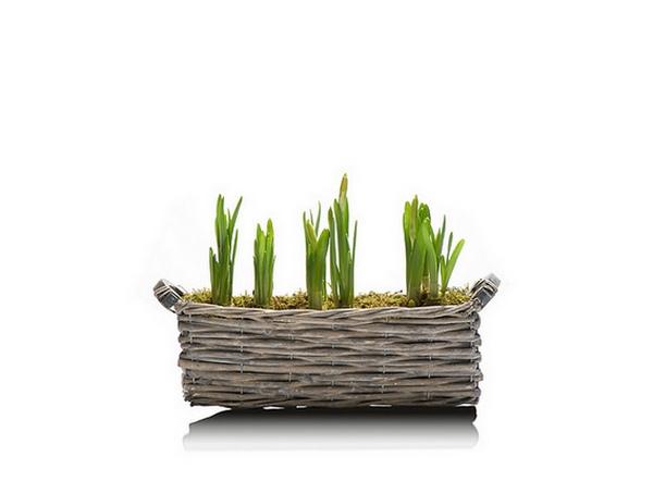 Иллюстрация к статье: Как обеспечить устойчивый рост бизнесу, раширить его и увеличить доходы: 5 шагов