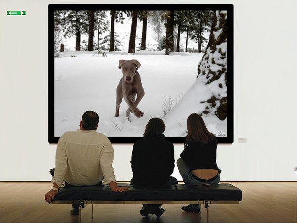 Иллюстрация к статье: Широкоформатные сенсорные экраны: удобно ли это?