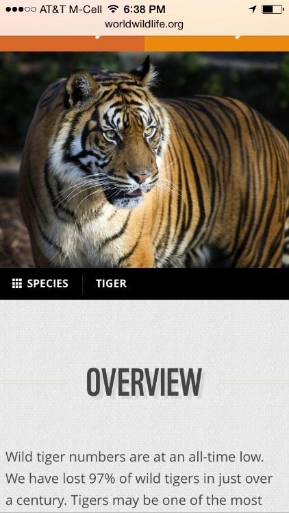 Сайт Всемирного Фонда дикой природы