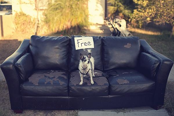 Как сделать freemium-бизнес прибыльным