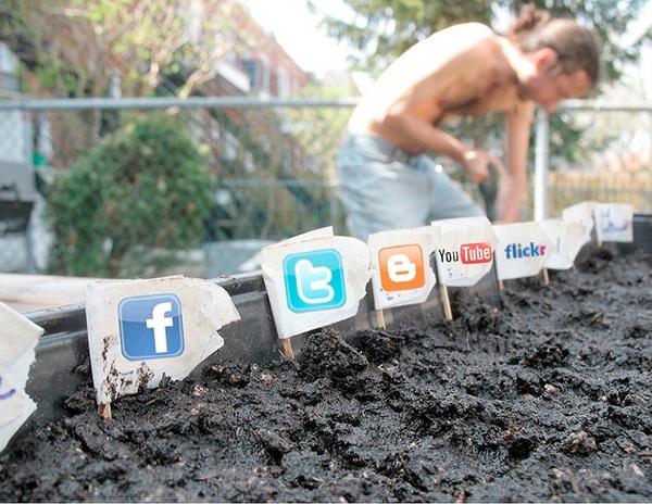 Иллюстрация к статье: 7 полезных советов по ведению рекламных кампаний в Facebook