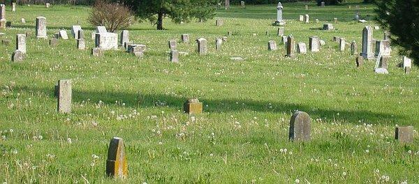 кладбище знаний