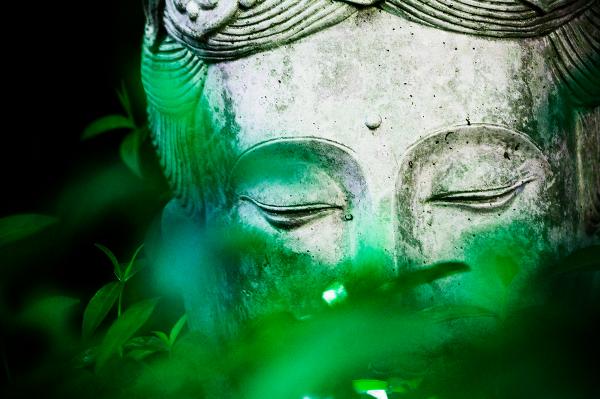 Иллюстрация к статье: Как стать умнее с помощью медитации?