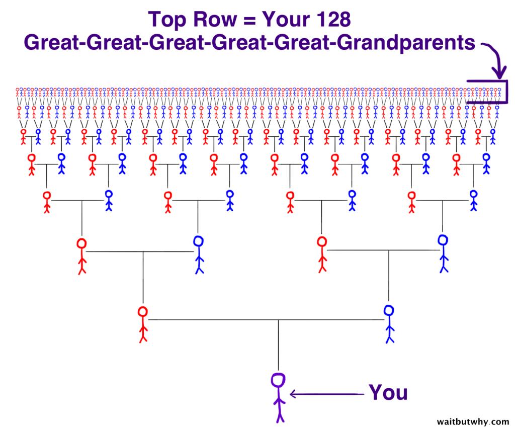 Прошлое: захватывающая история ваших предков