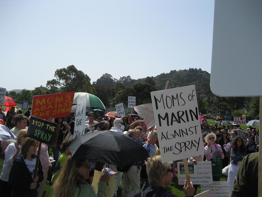 ассовый протест