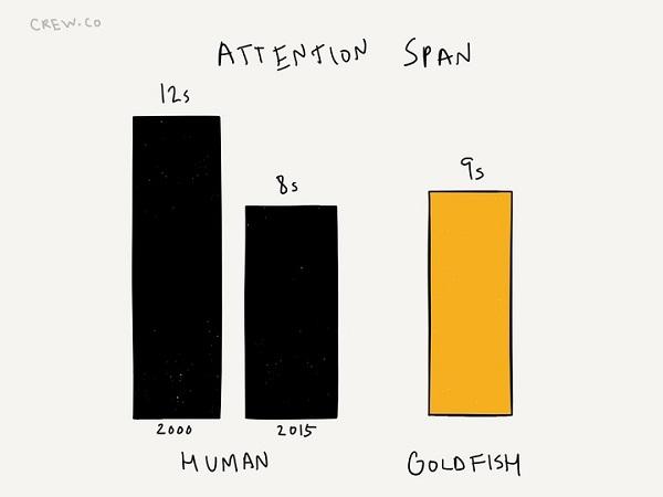 Продолжительность концентрации
