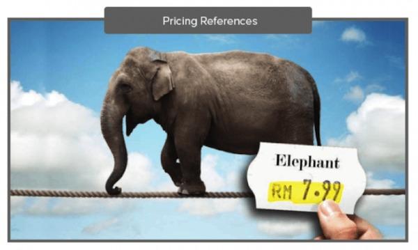 Сколько стоит слон?
