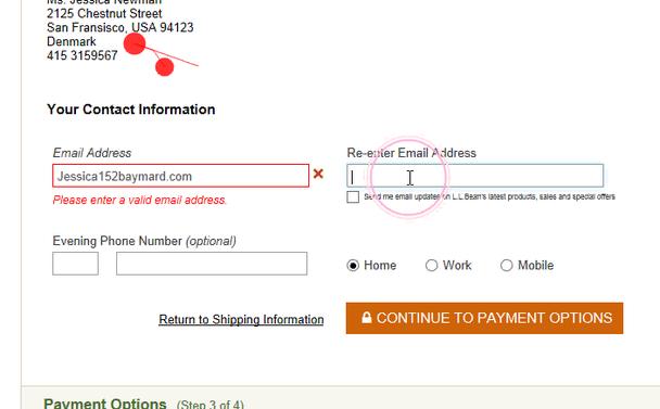 Посетитель сайта L.L.Bean опечатался, набрав email без @