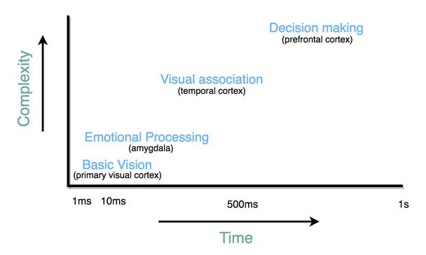 Иллюстрация к статье: Нейромаркетинг: как оформление презентации влияет на продажи?