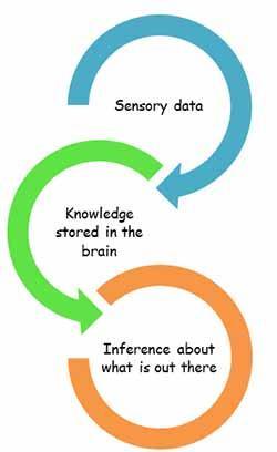 Схема работает следующим образом: сначала поступает чувственная информация, затем мы обращаемся к знанию в нашем мозгу и уже с его помощью мы делаем выводы об увиденном.