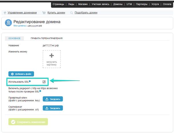 После этого, в меню редактирования домена поставьте галочку напротив пункта «Использовать SSL».