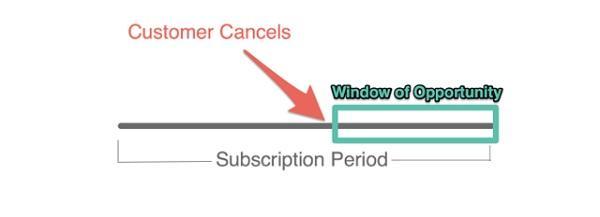149 000 SaaS-клиентов, около 45% потребителей отменяют свою подписку в среднем за 3 недели до завершения периода ее действия