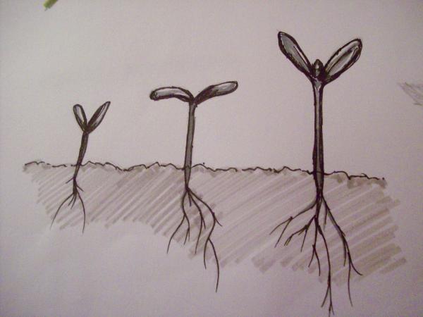 Иллюстрация к статье: Маркетинг роста как процесс: как избавиться от зависимости от хаков роста