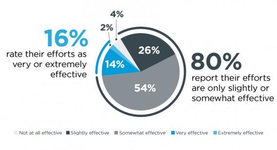 16% оценили свои усилия, как «очень эффективные», 80% — «отчасти эффективные», 4% — «совсем неэффективные»