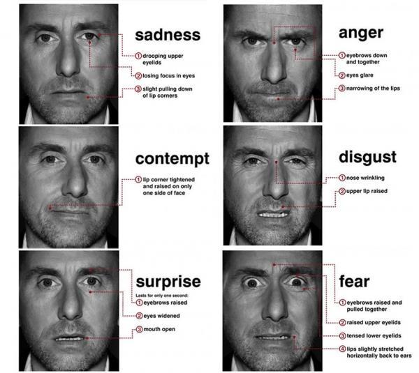 Примеры выделенных Экманом эмоциональных лицевых выражений