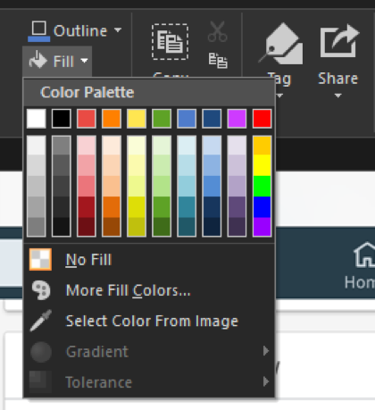 Snagit: недоступные варианты выделены серым цветом.