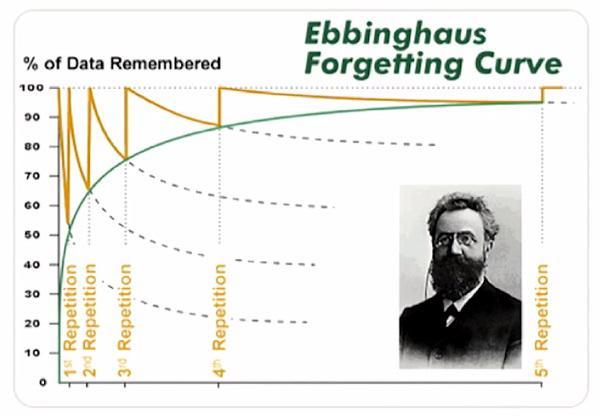 «Кривая забывания» Эббингауза