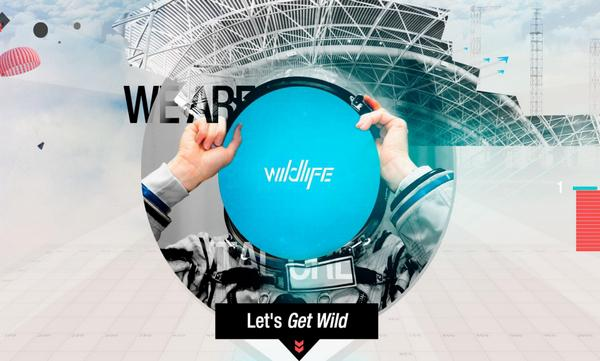 Who Is Wildlife
