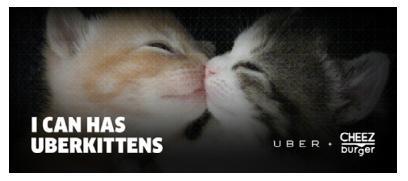 UberKittens