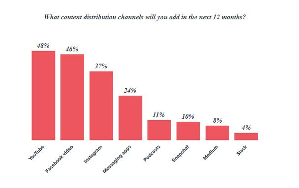 Какие каналы распространения контента вы планируете добавить в течение следующих 12 месяцев?