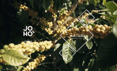 Joho's отправляет вас в путешествие, объясняющее происхождение их кофейных зерен