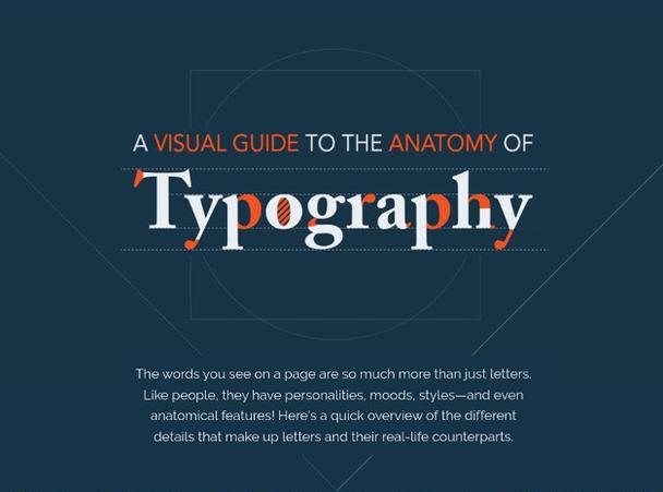 Иллюстрация к статье: Анатомия шрифта: визуальный гайд по типографике