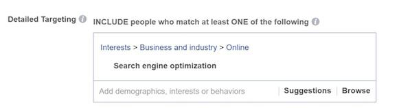 если вы продаете услуги SEO, укажите это в качестве интереса