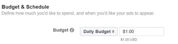 После этого установите дневной бюджет $1 в день (или больше, если есть возможность)