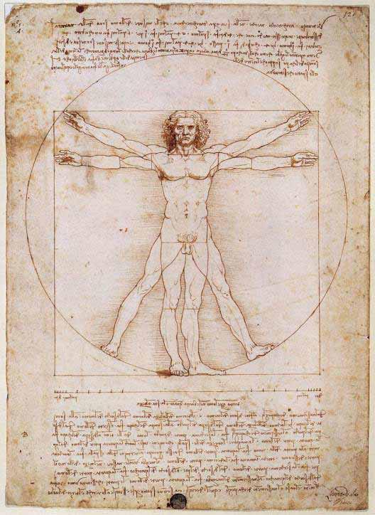 изображение Витрувианского человека