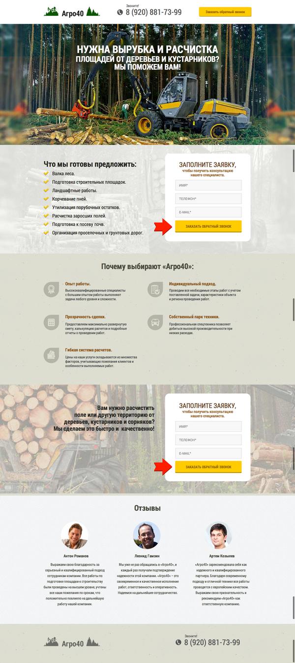 Иллюстрация к статье: Руководство по настройке Яндекс.Директ для лендинга