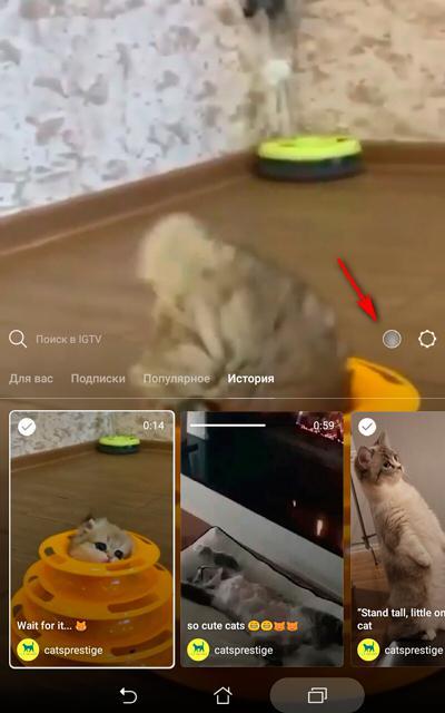 Вы видите маленькую иконку с аватаром пользователя, расположенную справа от панели поиска?