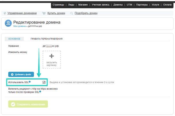 После этого вы попадете в меню редактирования домена, где вам останется лишь поставить галочку напротив пункта «Использовать SSL»